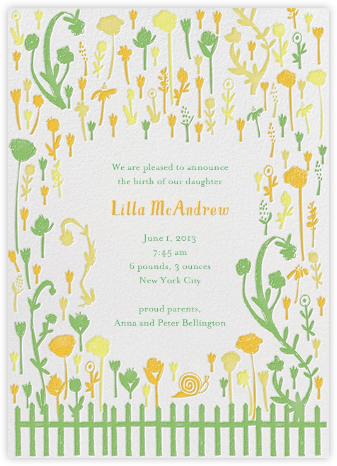 Born in Rose Garden - Yellows - Mr. Boddington's Studio -