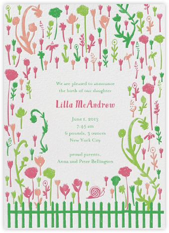 Born in Rose Garden - Brights - Mr. Boddington's Studio -