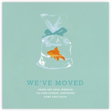 Goldfish - Hannah Berman - Moving announcements