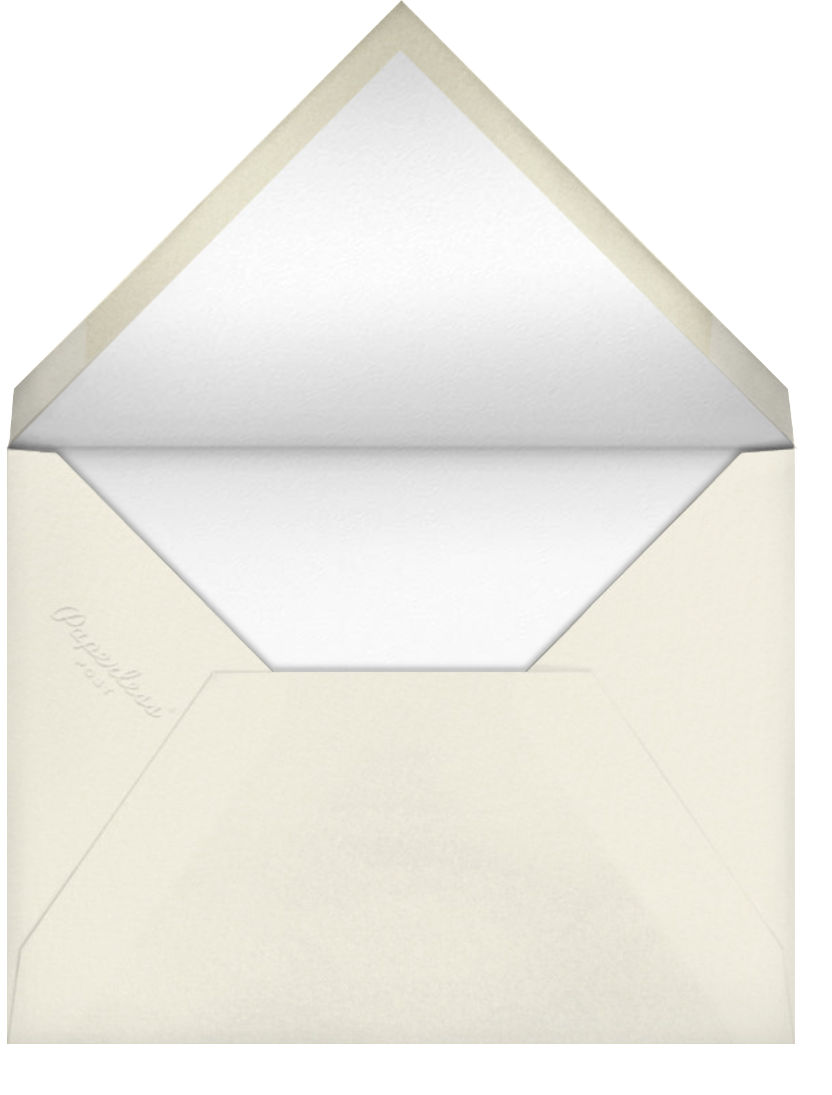 Stella and Dot Scarf - White - Paperless Post - Envelope