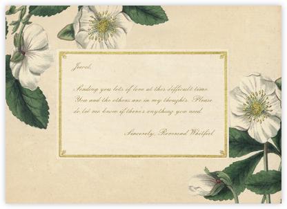 Hellebore Christmas Rose - Horizontal - John Derian - Sympathy cards