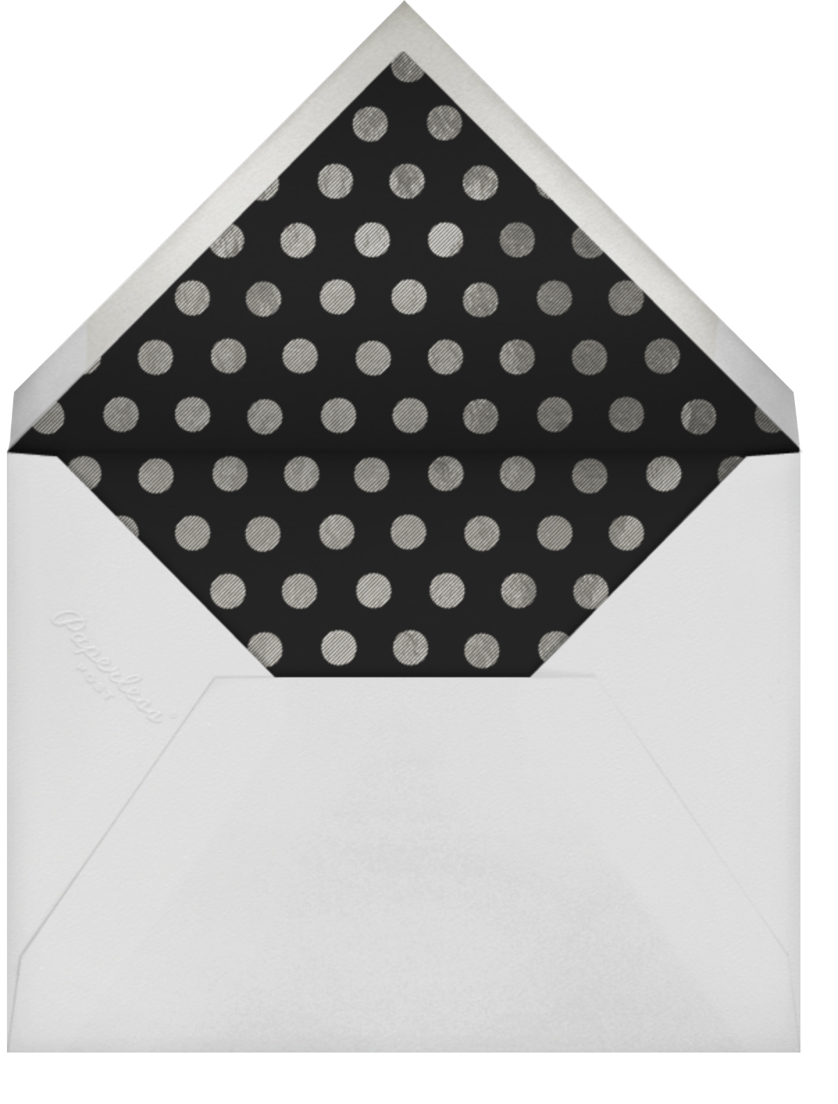 Snapshot Silver (Double Sided) - Horizontal - Paperless Post - Adult birthday - envelope back