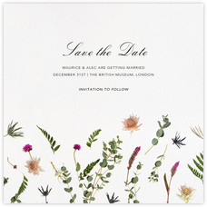Fleurs Sauvages (Save the Date)