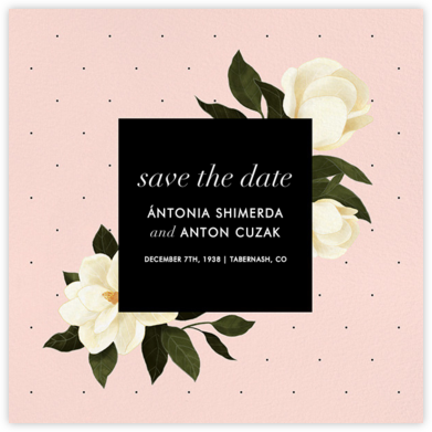 Plumier (Save the Date) | null