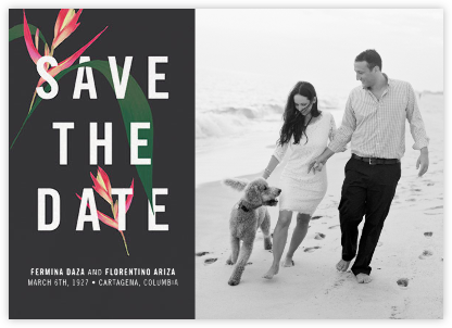 Paradisier (Save the Date) - Paperless Post - Modern save the dates