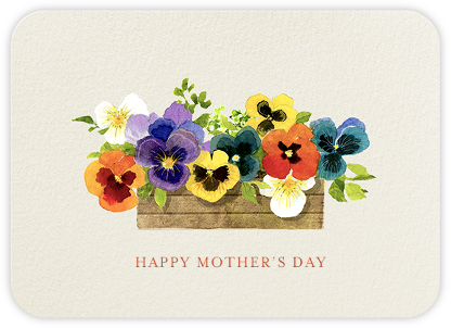 Pansies - Greeting - Felix Doolittle - Mother's day cards