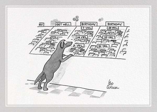 Dog Birthday - The New Yorker - Birthday cards