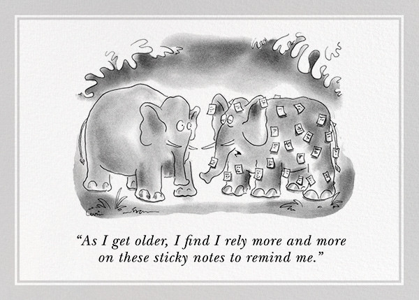Forgetful Elephant - The New Yorker - Birthday cards