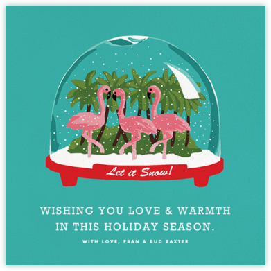 Tropical Snowglobe - Hannah Berman - Holiday Cards