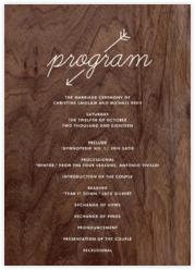 Wooden Love Arrow (Program)