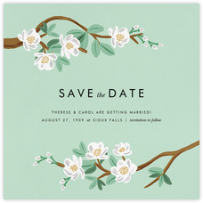Tea Tree (Save the Date) - Mint