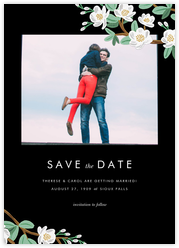 Tea Tree (Photo Save the Date)