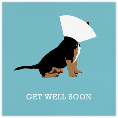 Conehead - Hannah Berman - Get well cards