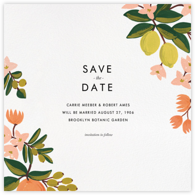 Citrus Orchard Suite (Save the Date) - White | square