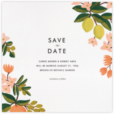Citrus Orchard Suite (Save the Date) - White