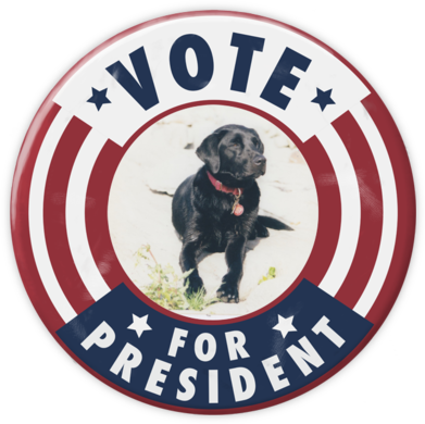 Vote for President - Paperless Post - Inauguration Invitations
