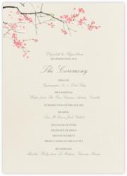 Japanese Cherry (Program)