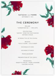 Pop Carnation (Program)