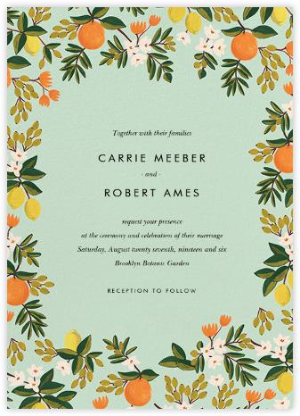 Citrus Orchard Suite (Invitation) - Mint | null