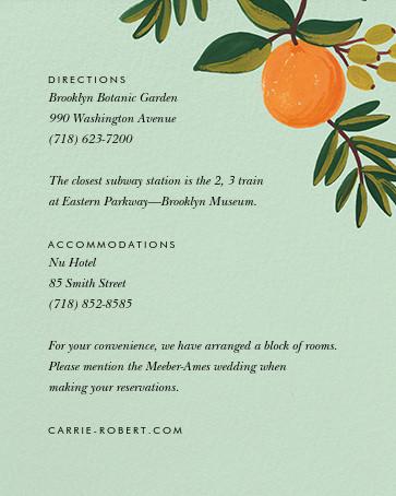 Citrus Orchard Suite (Invitation) - Mint - Rifle Paper Co. - Printable invitations - insert front