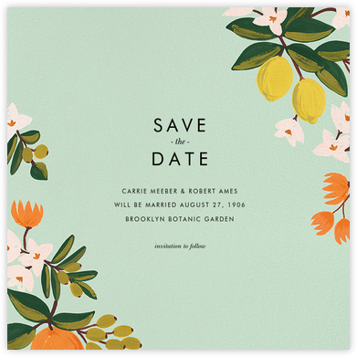 Citrus Orchard Suite (Save the Date) - Mint - Rifle Paper Co. - Rifle Paper Co. Wedding