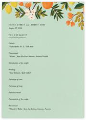 Citrus Orchard Suite (Program) - Mint