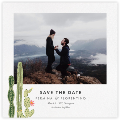 Sonora (Photo Save the Date) - Paperless Post - Destination