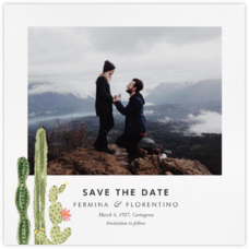 Sonora (Photo Save the Date)