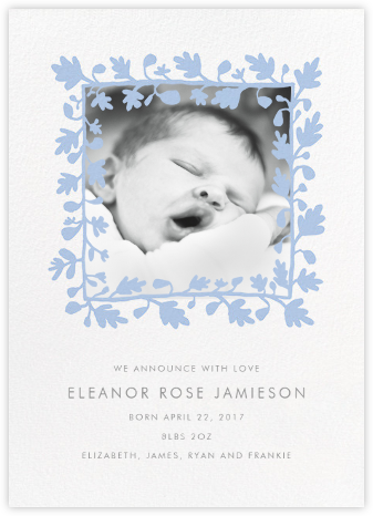 Ficus Photo (Announcement) - Spring Rain - Linda and Harriett - Birth Announcements