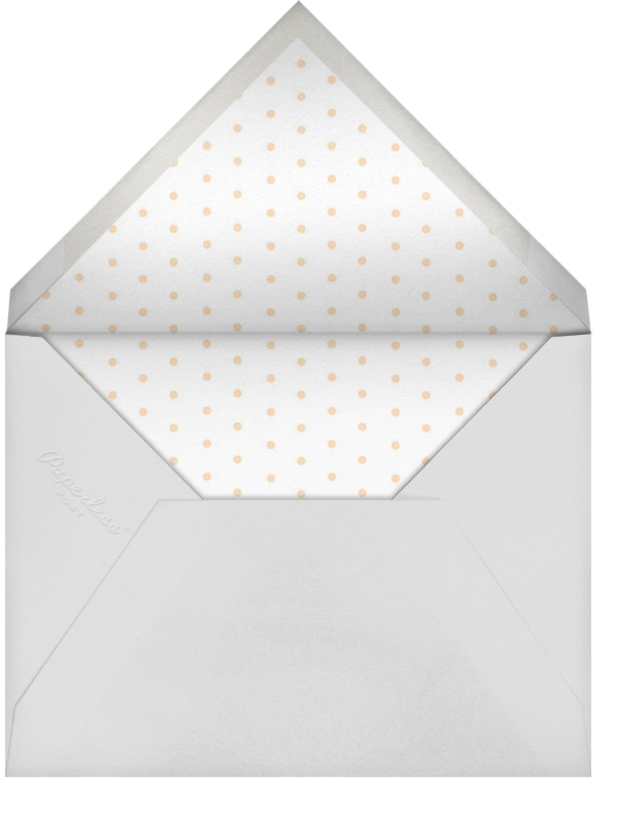 Mariachi - Rifle Paper Co. - Adult birthday - envelope back