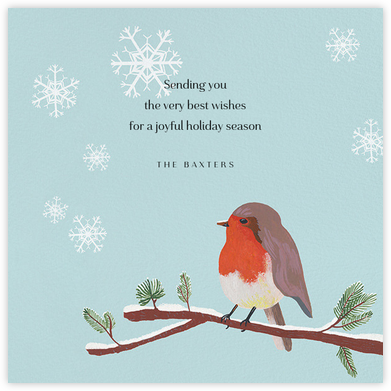 Robin Red Breast (Square) - Paperless Post - Holiday Cards