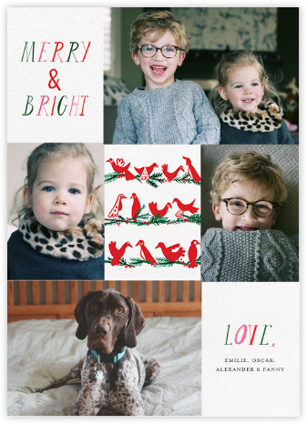 Peace Birds (Multi-Photo) - Mr. Boddington's Studio - Holiday Cards