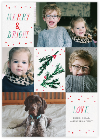 Tis the Season to Be Holly (Multi-Photo) - Mr. Boddington's Studio - Holiday cards