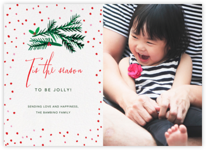 Tis the Season to Be Holly (Photo) - Mr. Boddington's Studio - Holiday cards