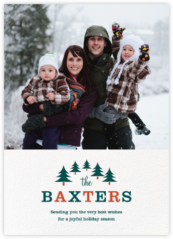 Family Outing (Tall) - Paperless Post - Holiday Cards