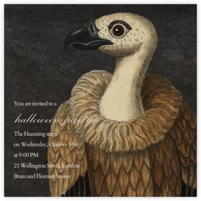 Vulture - John Derian -