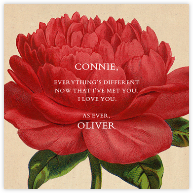 Paeonia - John Derian - Love and romance cards