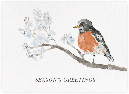 English Robin (Greeting) - Paperless Post - Use your own logo