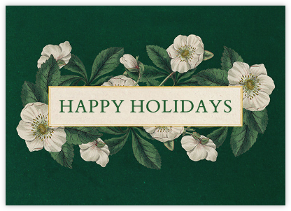 Hellebore Christmas Rose - John Derian - Holiday cards