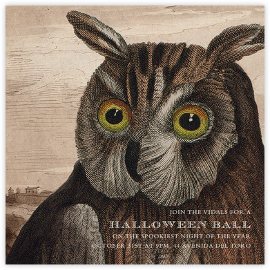 Owl - John Derian - Halloween invitations