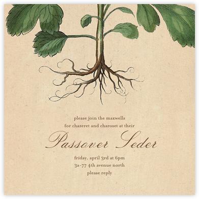 Roots - John Derian - Passover invitations