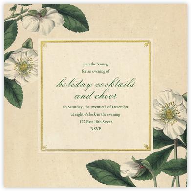 Hellebore Christmas Rose (Square) - John Derian -