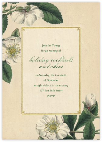 Hellebore Christmas Rose (Tall) - John Derian -