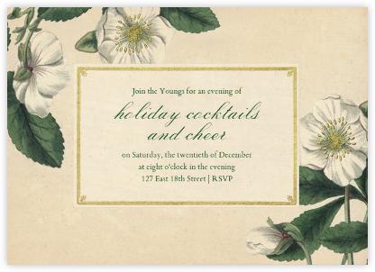 Hellebore Christmas Rose (Horizontal) - John Derian -