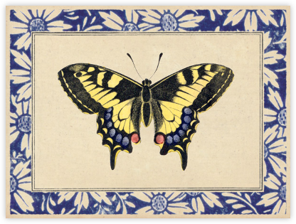 Butterfly Playing Card - John Derian