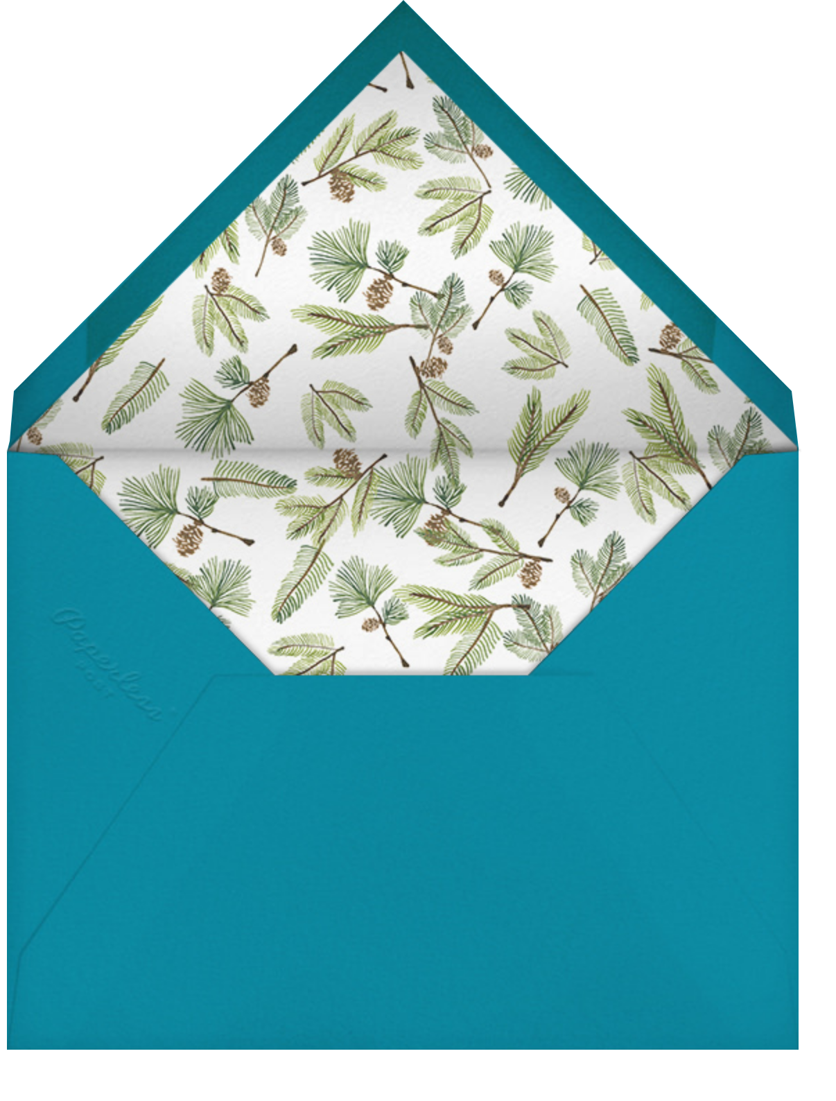 Full-Page Photo (Double-Sided) - Teal - Paperless Post - Envelope