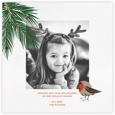 Finch and Fir (Square) - Paperless Post -