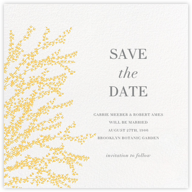 Forsythia - Yellow - Paperless Post - Save the dates