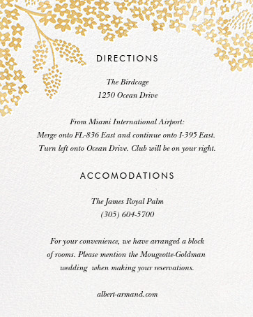 Heather and Lace (Invitation) - White/Gold - Rifle Paper Co. - All - insert front