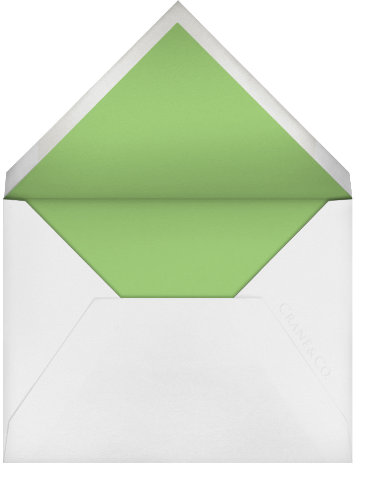 Painted Border - Spring Green - Paperless Post - Personalized stationery - envelope back